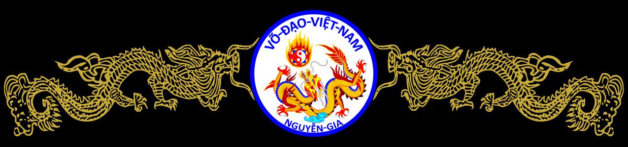 VDVN-Logo